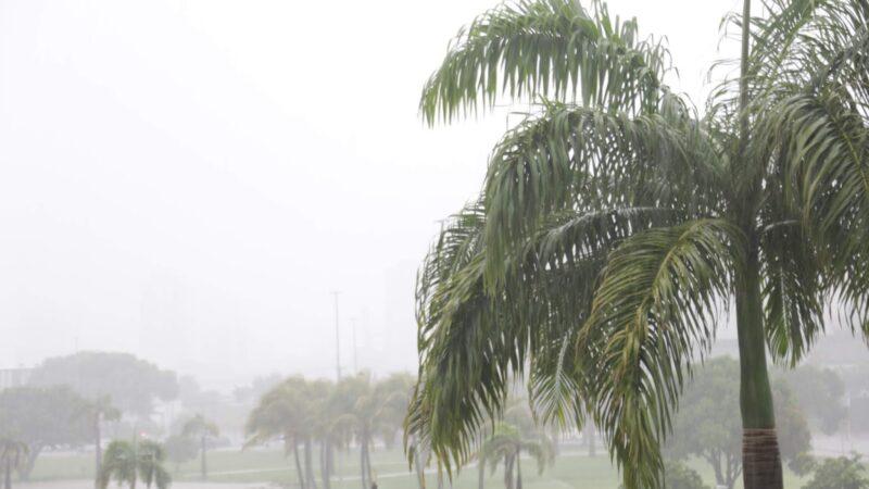 Emparn prevê chuvas dentro da normalidade no RN para o próximo trimestre