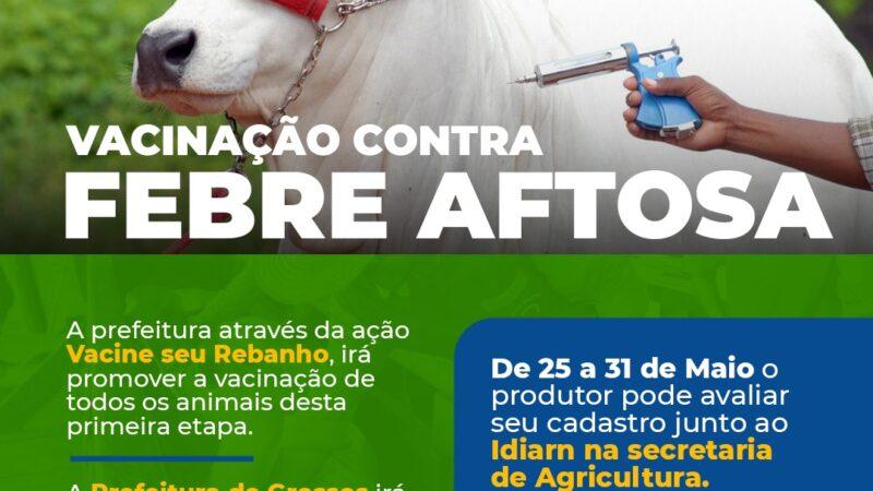 Município de Grossos inicia vacinação contra a Febre Aftosa em junho
