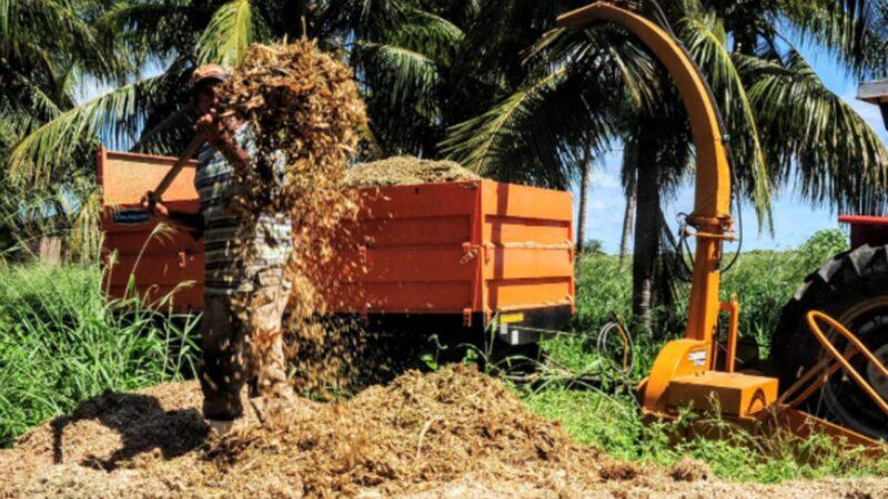 Programa Mossoró Forragem incentiva produção de silagem e feno para agricultura familiar