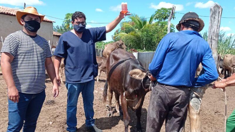 Prefeitura de Caraúbas presta assistência veterinária para produtores rurais de Santo Antônio e discute Política de Campo