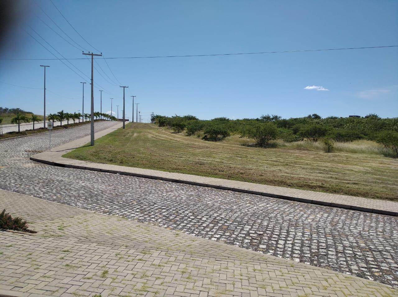 Prefeitura de Caraúbas realiza limpeza nas principais entradas da cidade