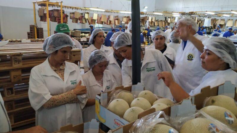 Agrícola Famosa cria nova empresa no Reino Unido