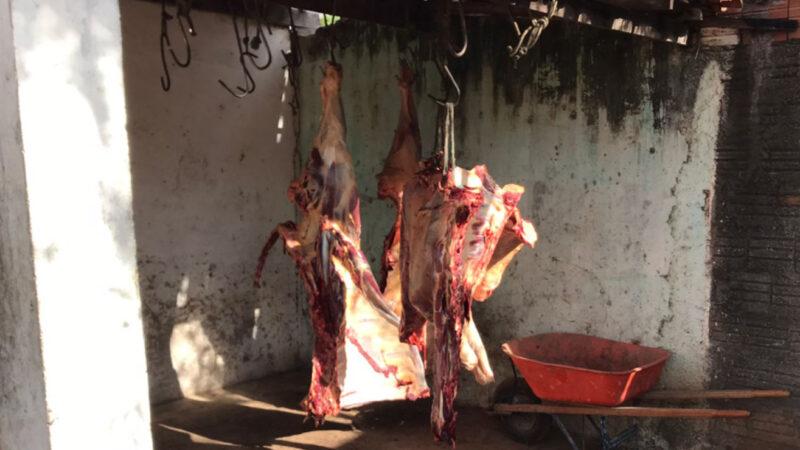 Fiscalização apreende em Mossoró, meia tonelada de carne em abatedouro clandestino