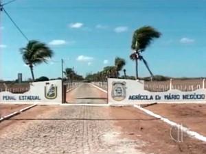 Outubro Rosa: apenadas da Penitenciária Agrícola Mário Negócio receberão atendimentos
